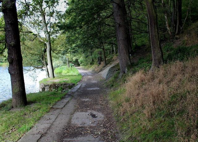 Footpath in Chellow Dene