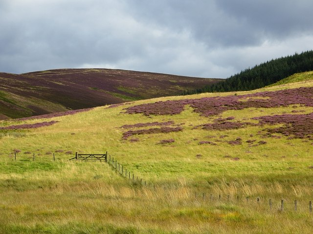 Moorland, Machan's Cleuch