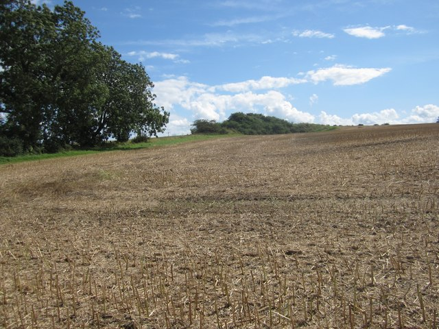 Arable land at Longdyke
