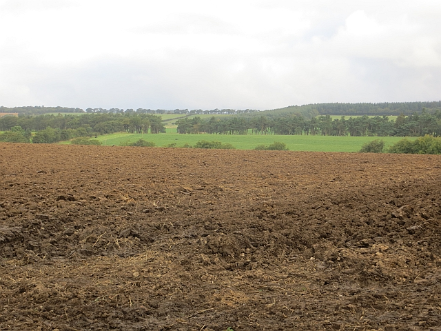 Ploughed field, Drumcrosshall