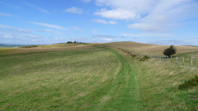 On Offa's Dyke Path just to the north of Panpunton Hill near Knighton