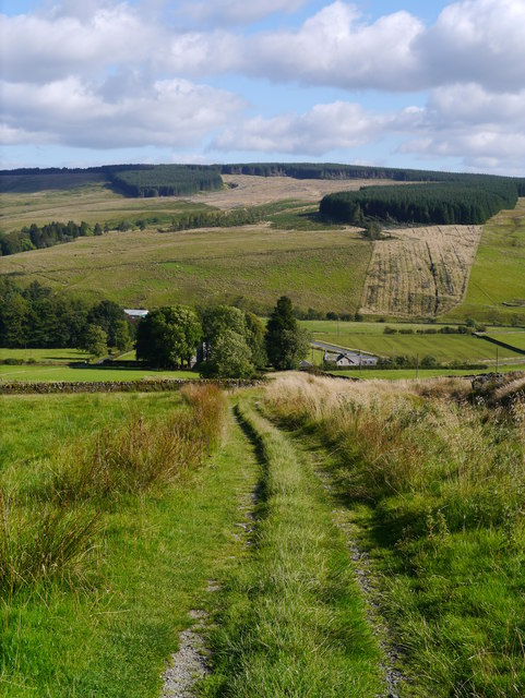 A View Down To Saughtree