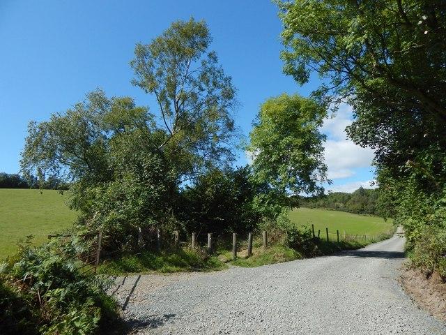 Track to Upper Dalquhurn Farm