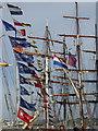 SW8132 : Ships' masts at Falmouth Tall Ships Festival 2014 : Week 34