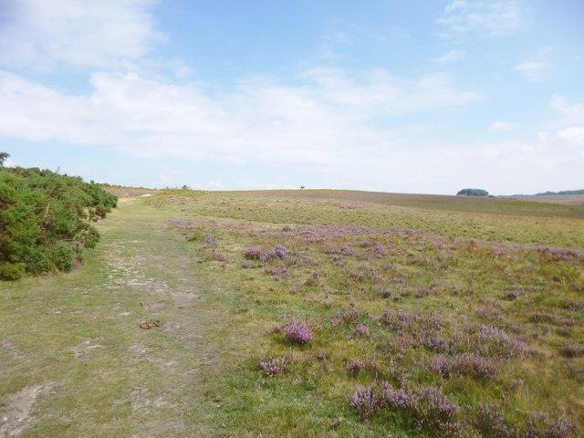 Deadman Hill