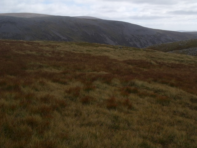Grassy area north of Caochan Dubh in the Eidart system, Glenfeshie