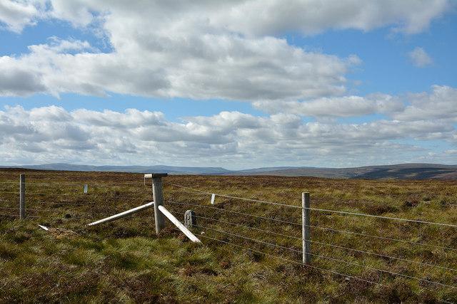 Summit area of High Carl