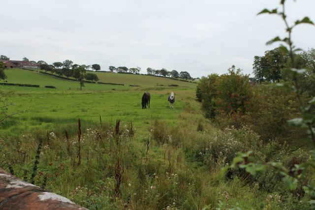 Farmland near Brackenhill