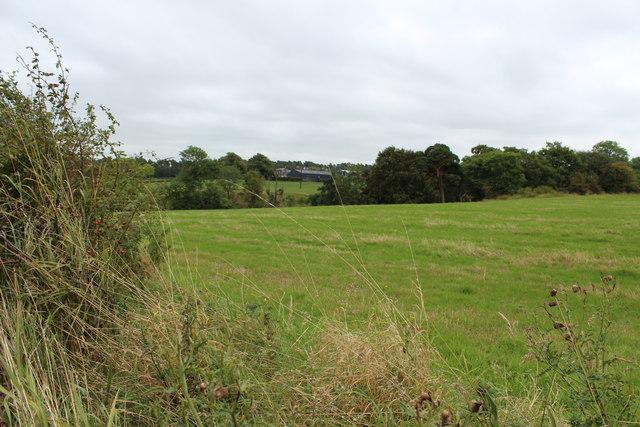 Farmland at Polnood Wood