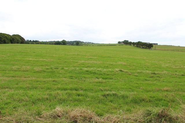Farmland near Cooperhill