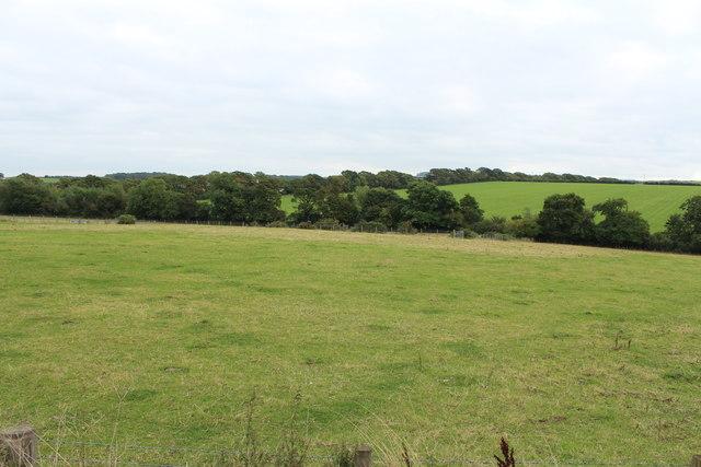 Farmland near Crofthead