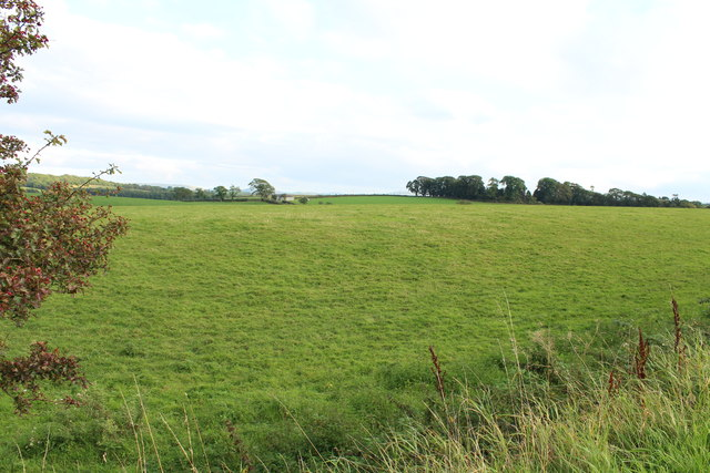Farmland near Myremill