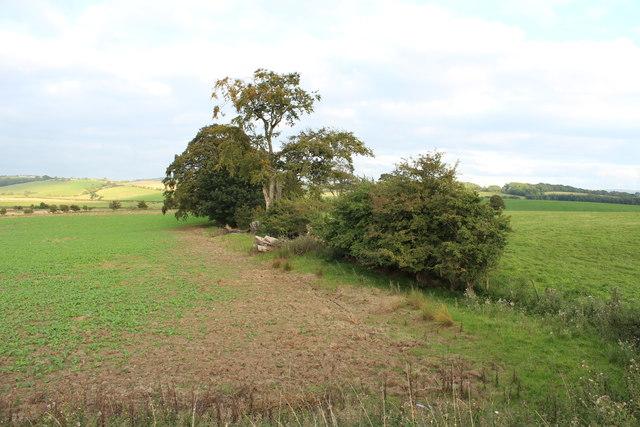 Farmland near Nether Culzean