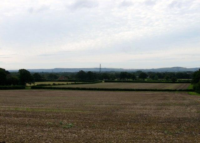 Roll Field/Hovel Field/Three Acres/Flat Field/Hogtrough Field