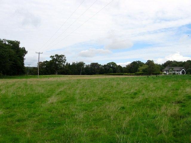 Five Acres/Kiln Field