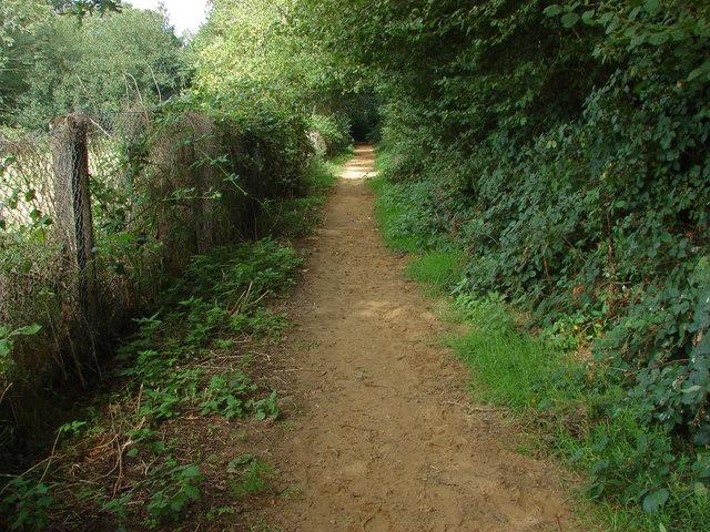Path to Chinthurst Hill