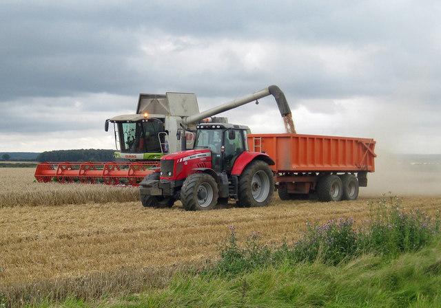 Harvesting on Elsham Wolds