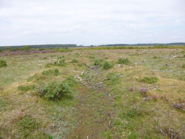 Deadman Hill, ditch