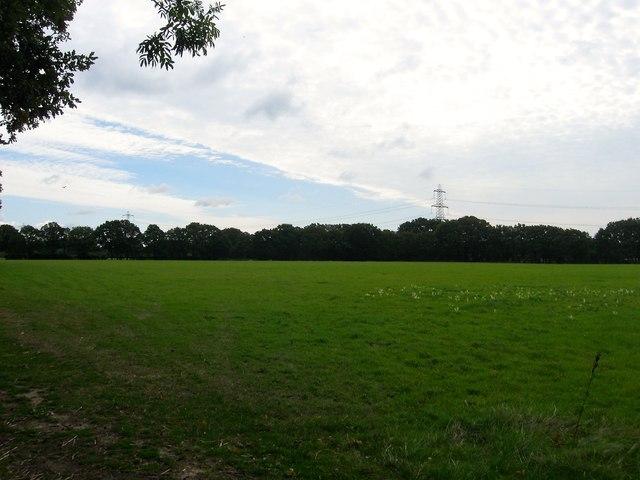 Barn Field/Copse Field