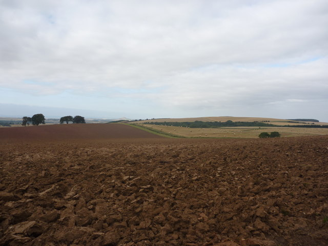 East Lothian Landscape : Beware Of The Lion!