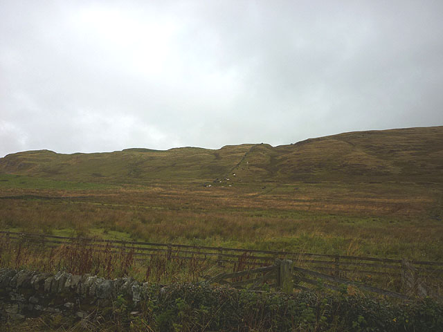 Rough pastureland south of Winshields Crags