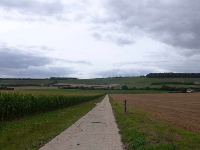 South Downs Way, Exton to Buriton (98)