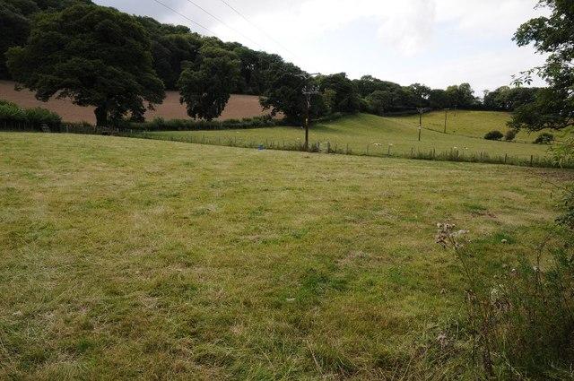 Fields below Coed Ty-gwyn