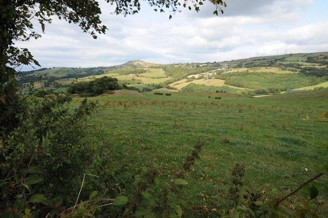Valley above Eglwysbach