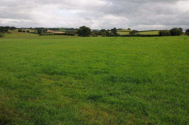 Field near Cefn Llech