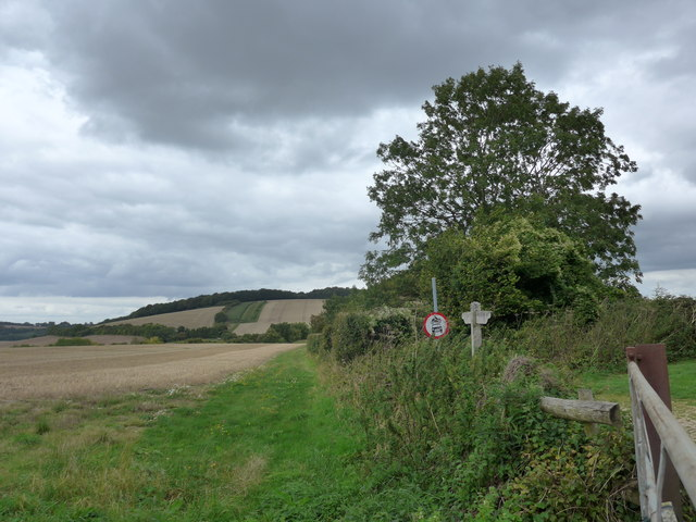 South Downs Way, Exton to Buriton (114)