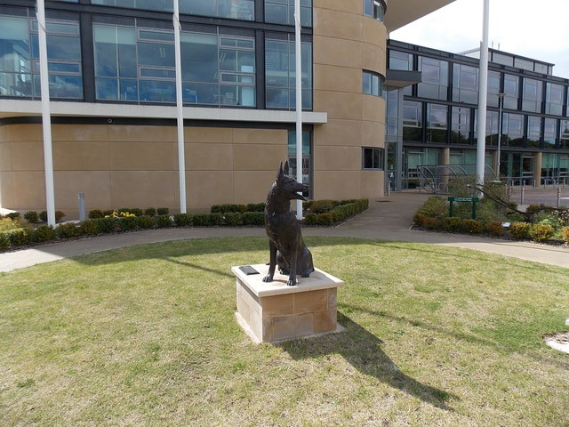 Military Working Dogs statue in  Melton Mowbray