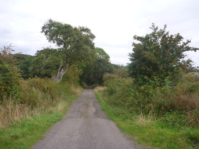 Rural East Lothian : Minor Road Heading SE From Baro Crossroads