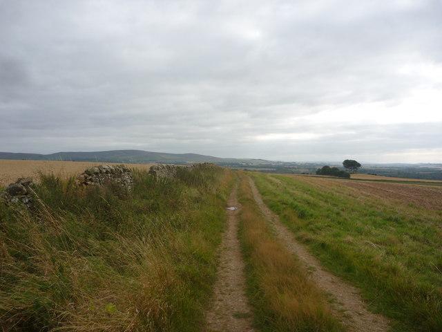 East Lothian Landscape : On Track