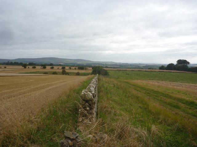 East Lothian Landscape : A Gap In The Wall