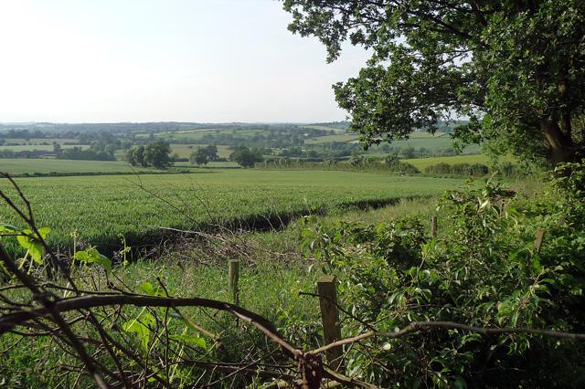 Farmland near Kedleston