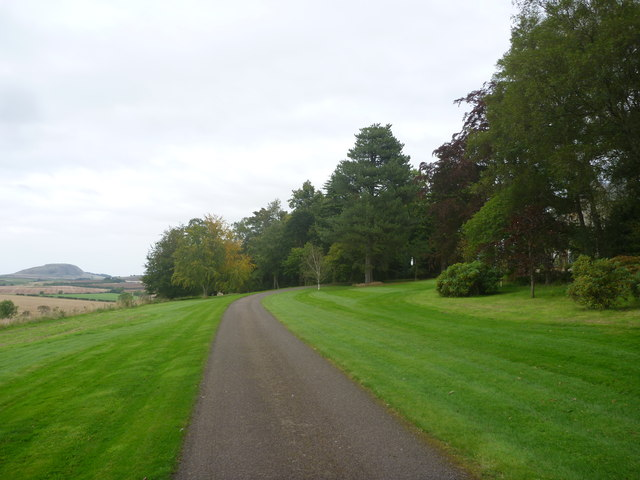 Rural East Lothian : The Driveway To Linplum House