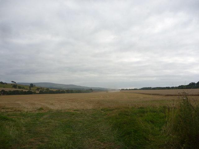 Rural East Lothian : Fieldscene Opposite Morham Bank Gateway