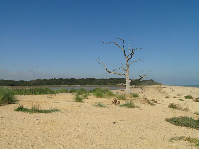 Benacre National Nature Reserve from the beach