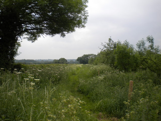 Footpath south west of Bleasby (2)