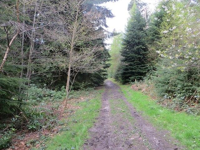 Path beside Wall Pool