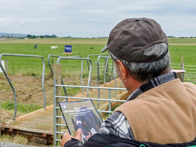 Spectator at the 2014 World Sheep Dog Trials, Fearn, Scotland