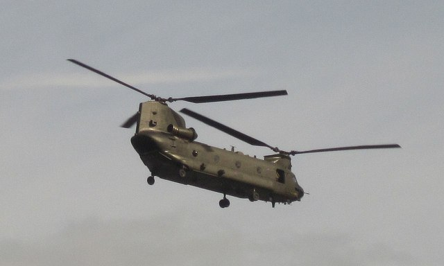 Chinook, Dartmouth Regatta