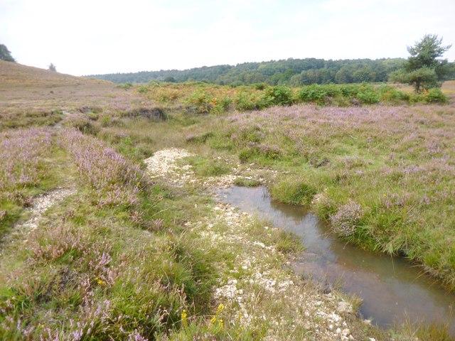 Cunninger Bottom, brook