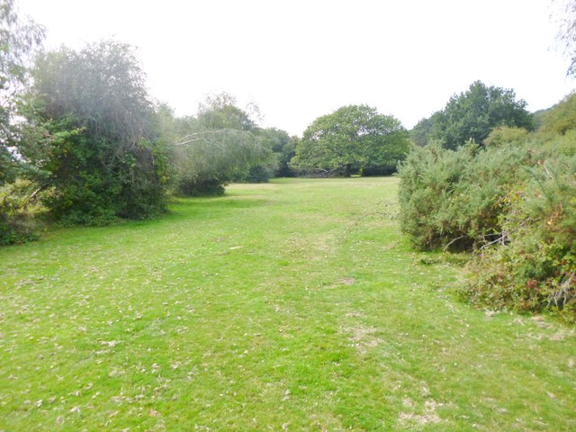 Millersford, grassland