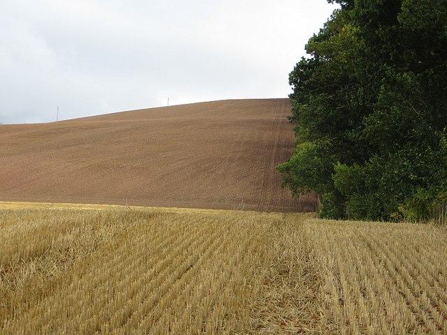 Farmland, Inchyra