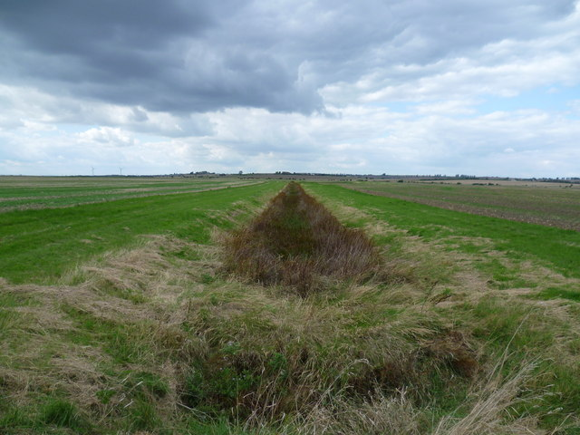 Drainage channel on Leysdown Marshes
