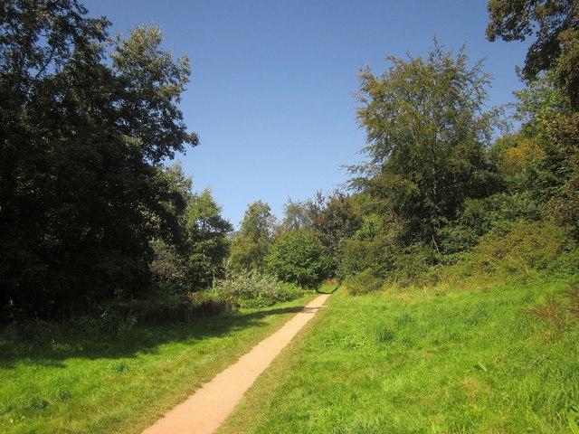 Path along Cockington valley
