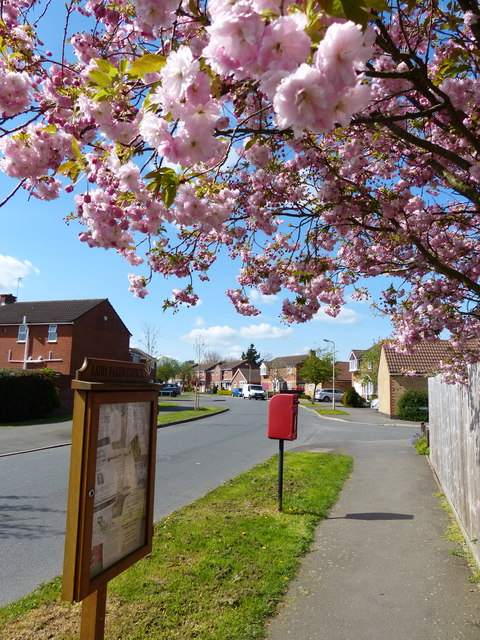 Tyler Road postbox in Ratby