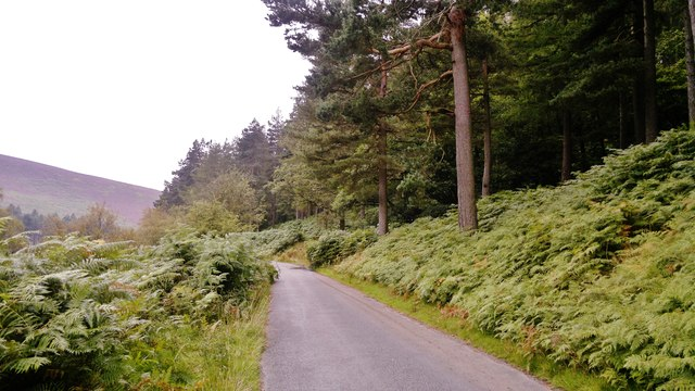 Road along Howden Reservoir