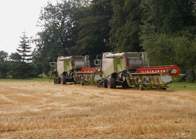 Combined harvesters near Gill's farm